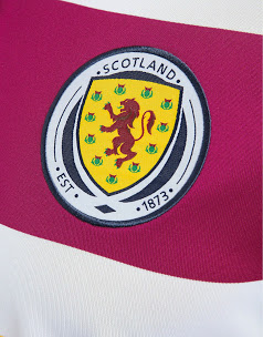 Scotland 2014 Away Kit (2)