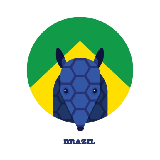 splinter sweepstake 12elfth man design football brazil