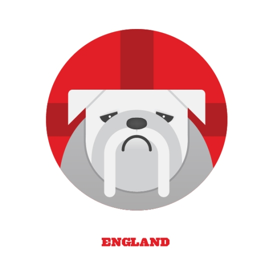 splinter sweepstake 12elfth man design football england