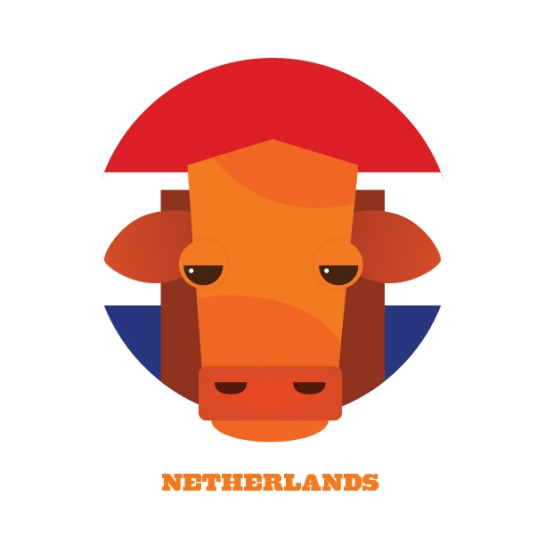 splinter sweepstake 12elfth man design football netherlands