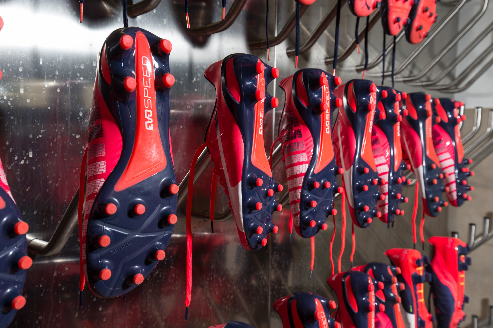363112. 363123. Every feature of the evoSPEED 1.3 boot ... e88bb84da